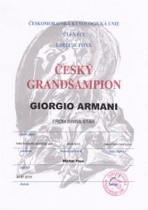 cz grand champion