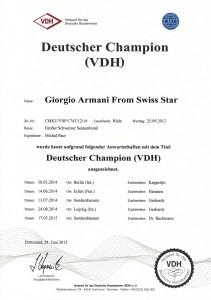 deutcher champion VDH o