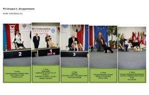 salzburg2014 FCI2 TOP5